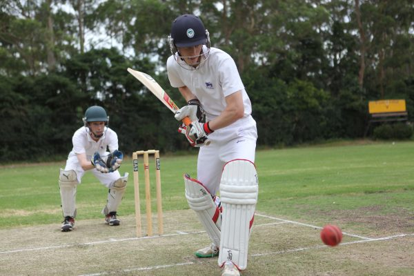Sport - cricket